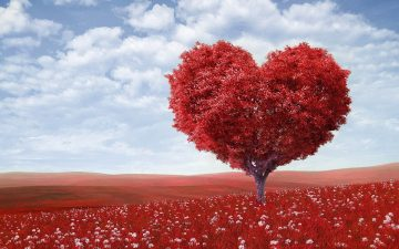 A Complete Guide in using Feng Shui for Love
