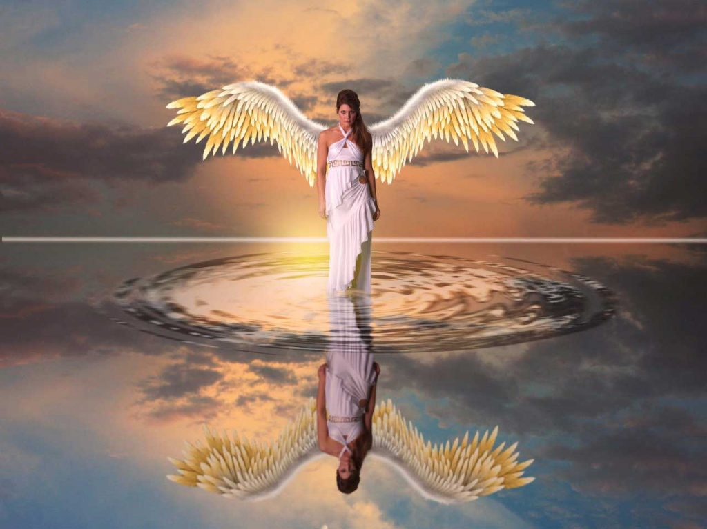 what are earth angels purpose, earth angels purpose
