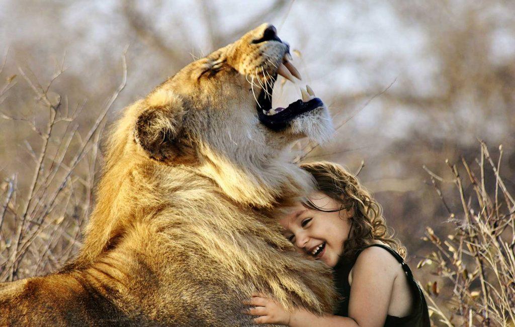 fauna empath