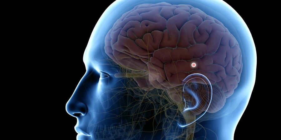 what is pineal gland