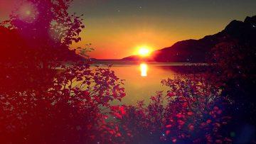 The beautiful sun set