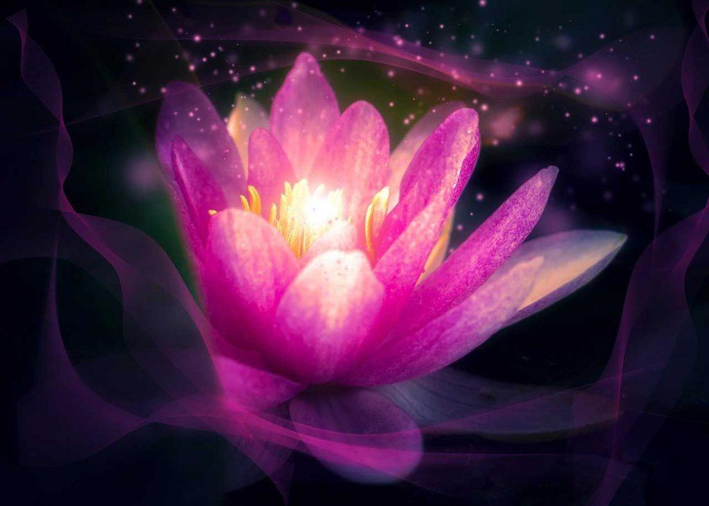 zen meditation benefits, benefits of zen meditation, zazen meditation benefits